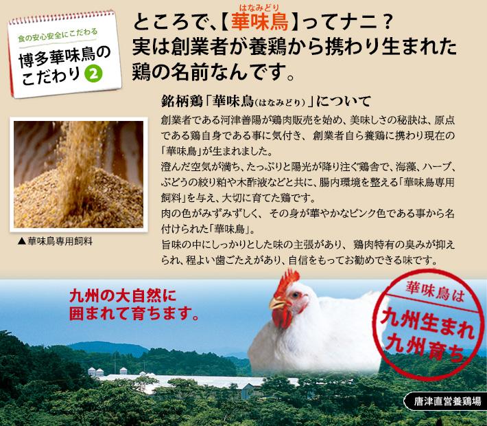 銘柄鶏の華味  鳥(はなみどり)は九州生まれ九州育ち